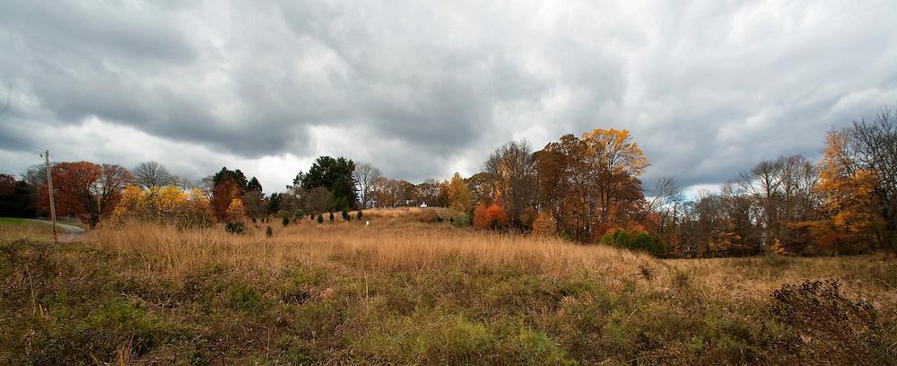 Ridley Creek Road