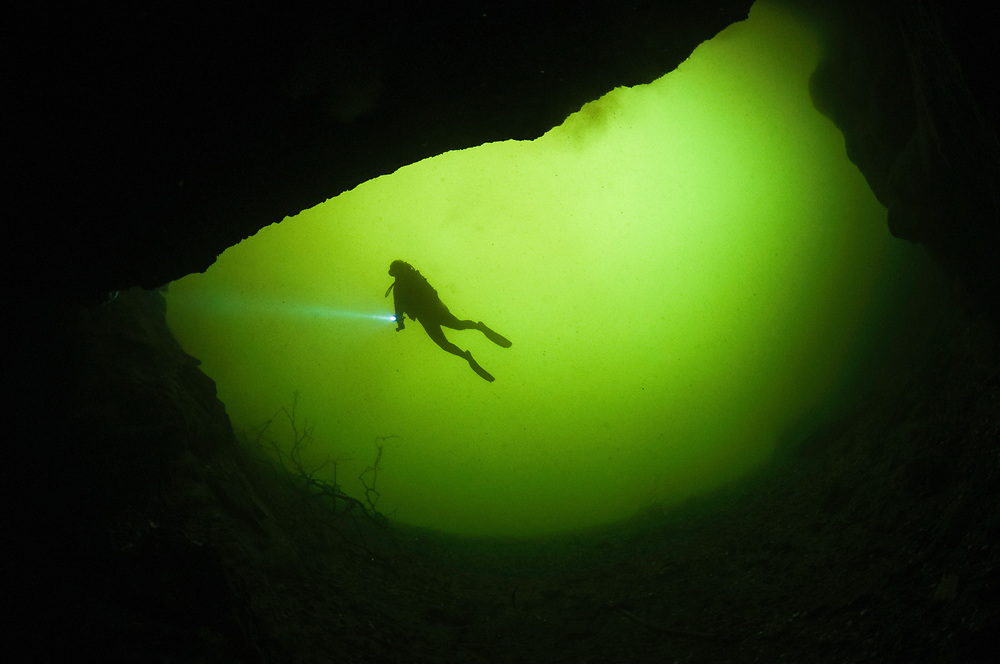 Scuba diving tourism is a possible way for islanders to gain income from a non-destructive use of the ponds. If the ponds begin to earn income, perhaps the government will have enough incentive to protect them.