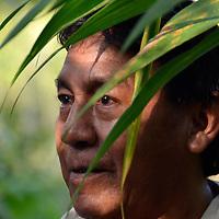 Jose nos explico como funciona un conuco en Kamarata. Edo. Bolivar. Venezuela. Jose explained us how work a conuco in Kamarata. Edo. Bolivar. Febrero 23, 2013. Jimmy Villalta.