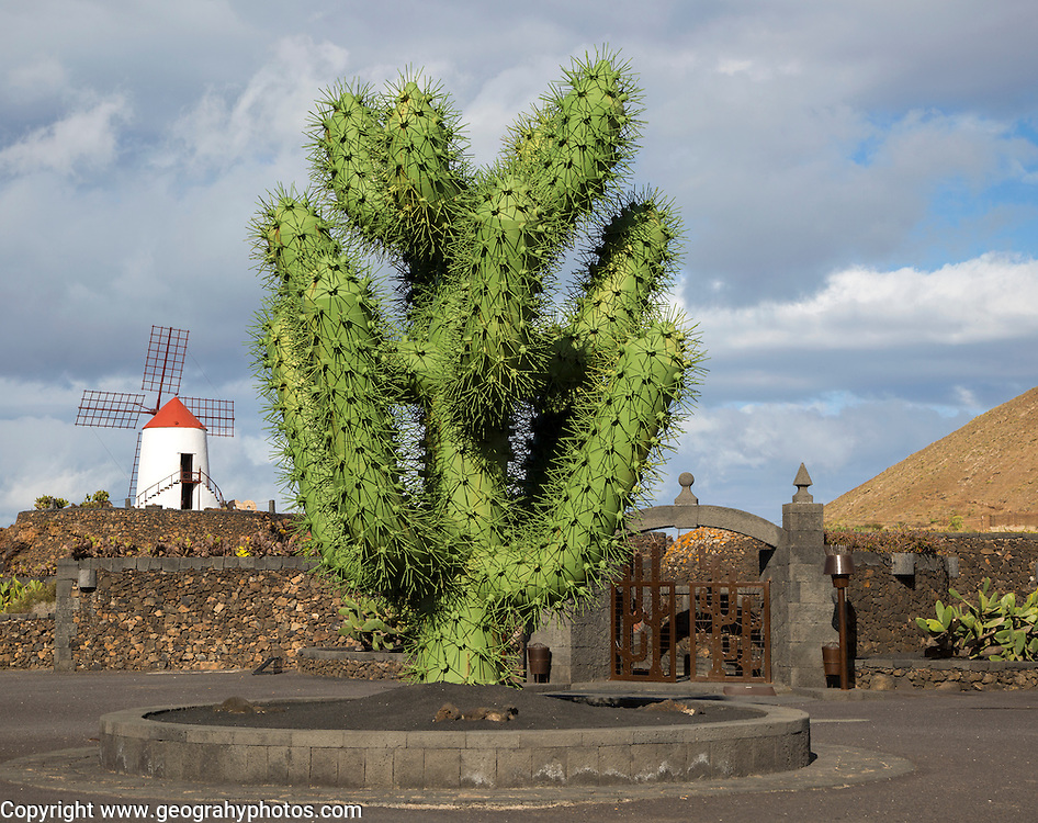 Giant green cactus sculpture outside Jardin de Cactus designed by César Manrique, Guatiza, Lanzarote, Canary Islands, Spain