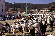 Easter in Chamula Indian village  Chiapas  Mexico    .  .p,ques: dans le village indien de Chamula  Chiapas  Mexique  .    L1241  /  R00110  /  P117025