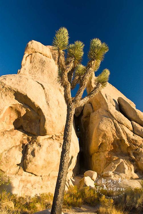 Granite boulders, Joshua Tree National Park, California
