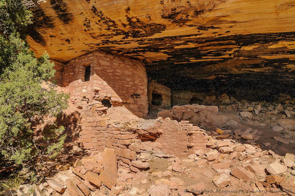 Fish Mouth Cave ruins; Comb Ridge, Cedar Mesa, UT