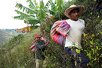 Coca pickers carry bags full of coca leaves in El Rosario, Nariño, in southwestern Colombia, on July 15, 2008. Nariño is a one of Colombia's most troubled departments; with wide spread coca cultivation and the presence of illegal armed groups vying for control of the coca business. (Photo/Scott Dalton)