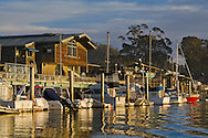 Boats along the Embarcadero Waterfront, Morro Bay, California