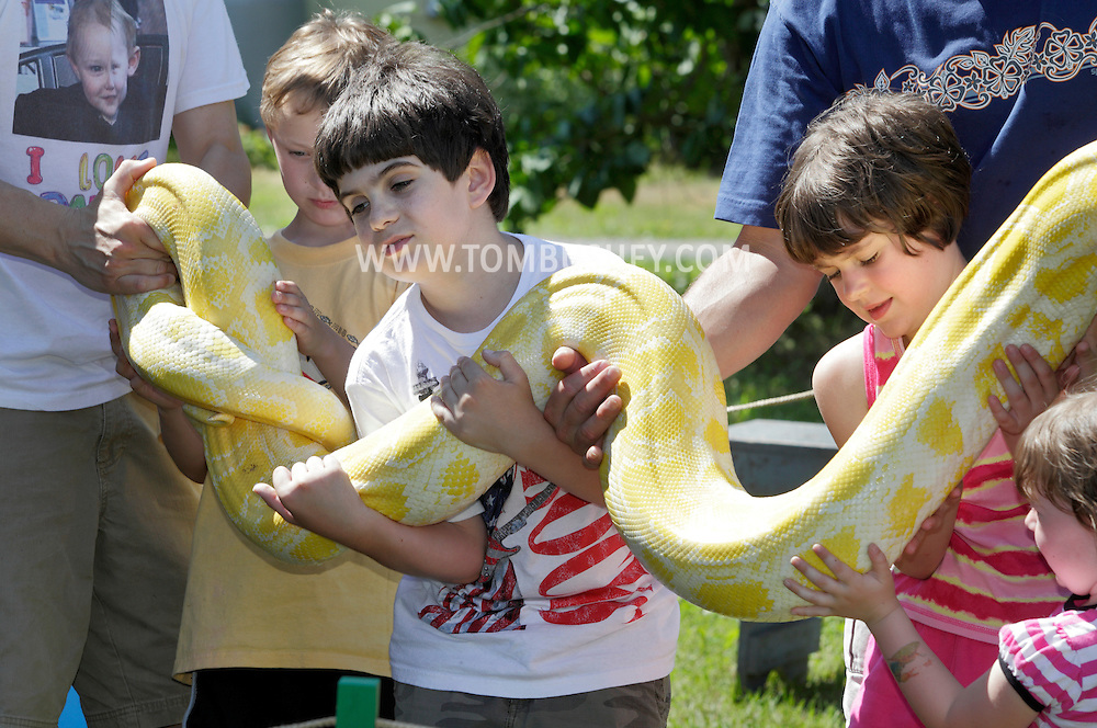 Bloomingburg, New York -  Children help hold up a large snake during one of Jerry Hillard of Snakeman's Snake Shows at Butterfly Botanicals on June 20, 2010.
