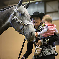 Lauren Wood | Buy at photos.djournal.com<br /> Katherine Haynes of Oxford holds her granddaughter Mary Conlee Mize, 8 months, as they pet Hayne's horse Crosby in the arena on Friday, March 10 during the annual MSU Bulldog Classic AQHA Horse Show at the MS Horse Park in Starkville.