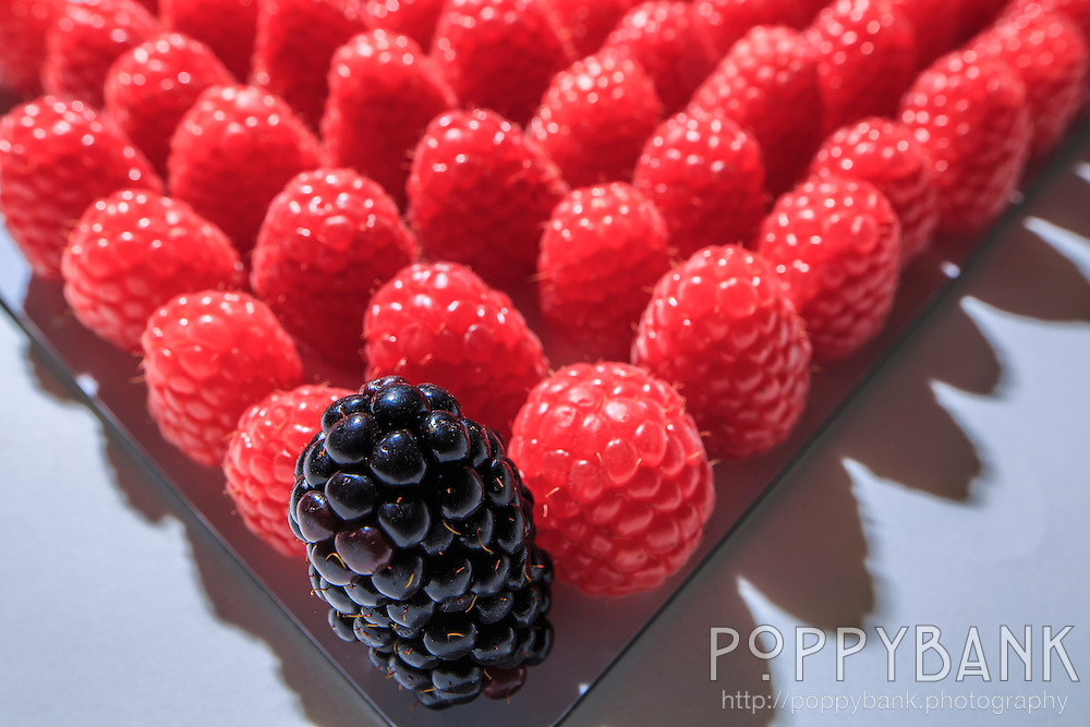 An isolated blackberry in a crowd of raspberries