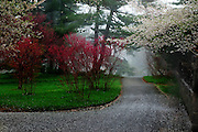 NY Botanical Garden, Bronx, NY (US).