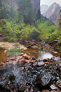 A small waterfall empties into the Lower Emerald Pool in Zion National Park, Utah.