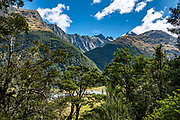 Mt Alba rises above Crucible Valley which enters the flats of Siberia Valley in Mount Aspiring National Park, Southern Alps, Otago region, South Island of New Zealand. Seen from the Wilkin Track where forested Gillespie Valley meets the broader Siberia Valley. UNESCO lists Mount Aspiring as part of Wahipounamu - South West New Zealand World Heritage Area.