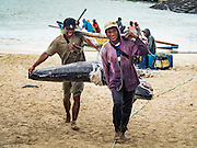 18 JULY 2016 - KUTA, BALI, INDONESIA:  Workers carry marlin to buyers waiting to weigh and grade the fish at Pasar Ikan pantai Kedonganan, a fishing pier and market in Kuta, Bali. Yellowfin are extremely popular with Japanese consumers for sushi and sashimi and the best yellowfin caught in Indonesian waters are sent directly to Japan.   PHOTO BY JACK KURTZ