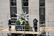Workers secure the Swarovski Star to the top of the 75-foot Rockefeller Center Christmas tree, Thursday, Nov. 16, 2017, in New York. The 85th Rockefeller Center Christmas Tree Lighting ceremony will take place on Wednesday, November 29. (Diane Bondareff/AP Images for Tishman Speyer)