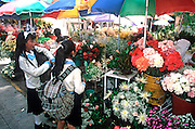 ECUADOR, HIGHLANDS, CUENCA school children in flower market