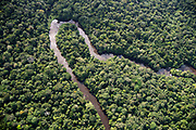 The western branch of the Rio Uaça meanders through rainforest land west of Parque Nacional do Cabo Orange in Brazil.
