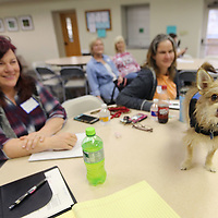 Waldo, Nanette Martin's dog that she adopted from Houston after Hurricane Harvey, stands on a table where Nellie Tyra, of Blue Springs, who volunteers her time as the photographer at the Tupelo-Lee Humane Society, and Michelle Pugh, an employee at the Tupelo-Lee Humane Society, sit during as they listen during the workshop taught by Martin.