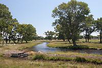 Rio Grande on CO 3W near Monte Vista, Colorado