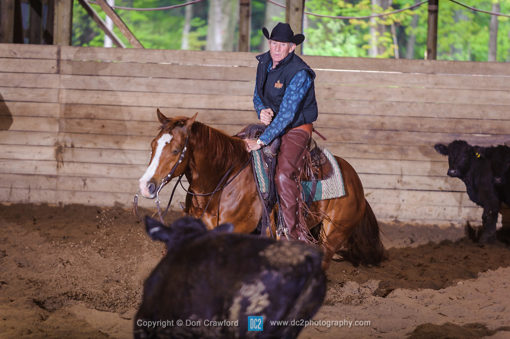 May 21, 2017 - Minshall Farm Cutting 4, held at Minshall Farms, Hillsburgh Ontario. The event was put on by the Ontario Cutting Horse Association. Riding in the 2,000 Limited Rider Class is David Hamilton on Cat Powered owned by the rider.