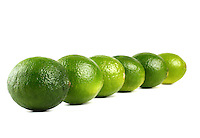 Limes on white background - studio shot