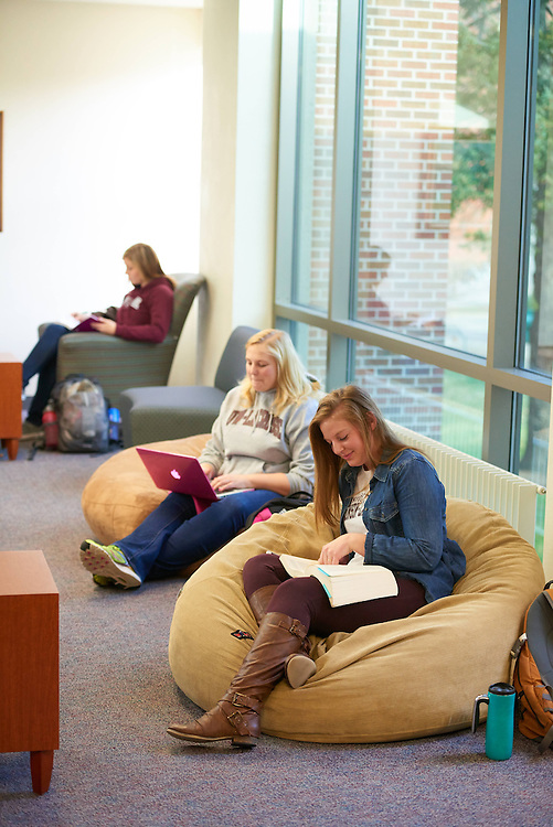 UWL UW-L UW-La Crosse University of Wisconsin-La Crosse; Activity; Studying; Buildings; Murphy Library; People; Student Students; Time/Weather; day; Winter; December; Woman Women; Objects; Computer; notepad; Chair; Books