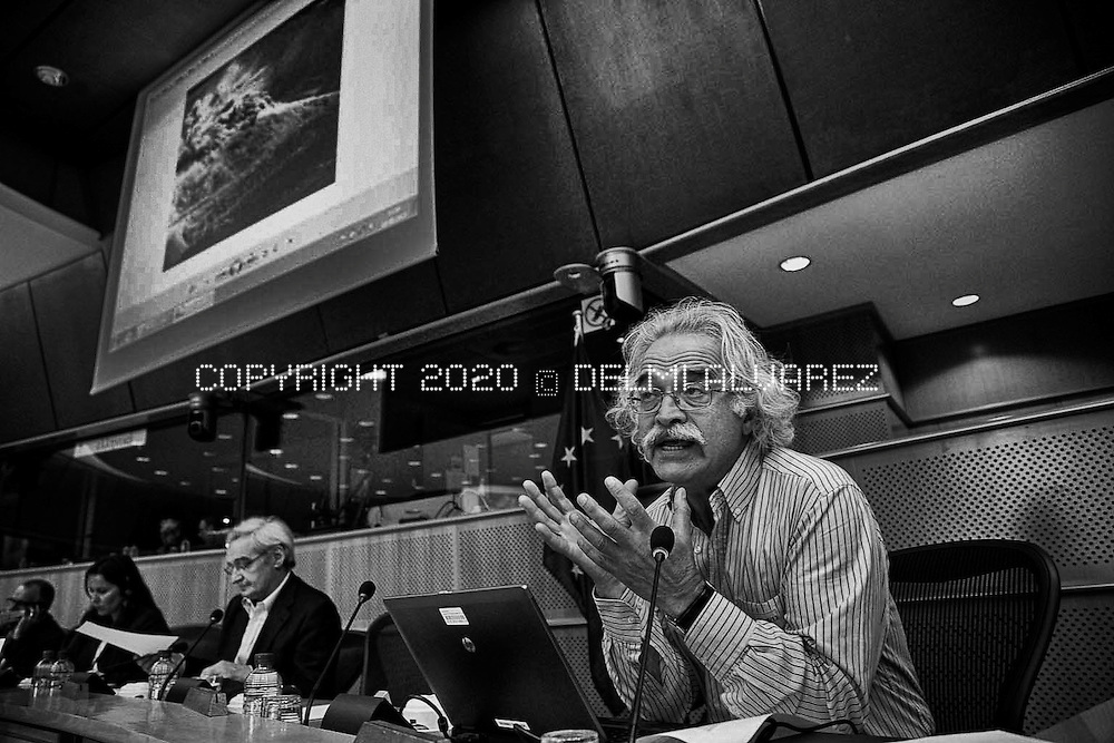 Greek Professeur de l'Université de Thessalonique and environment activist, Kyriakos Panagiotopoulos speaking in the public hearing Social Movements in Europe against big mining projects at the European Parliament in Brussels.