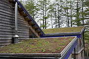 Green rooftops at the Red Kite feeding centre in Nant yr Arian, Wales