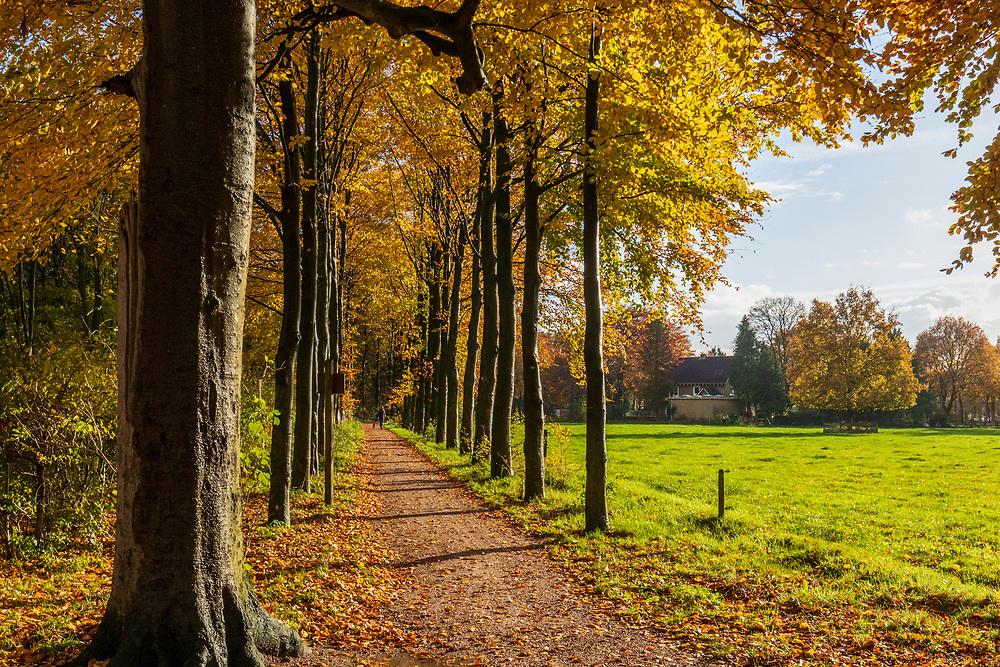 Kernhem, Ede, Gelderland, Netherlands