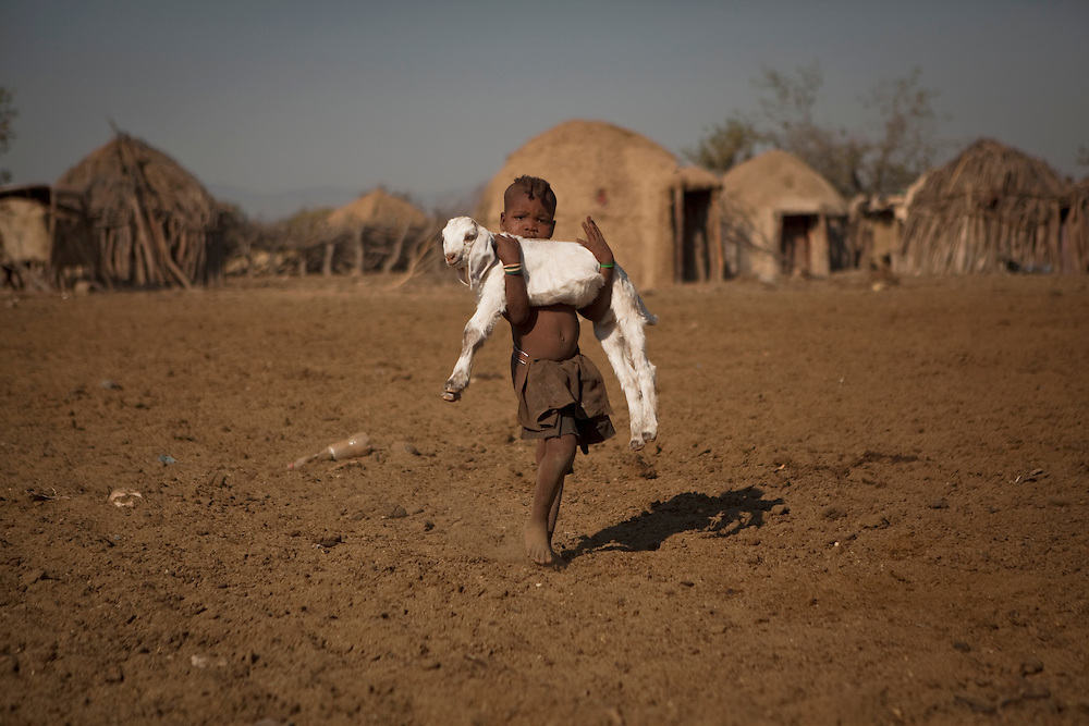 A Himba boy carries a sheep in his little village near Opuwo, in Namibia, Africa.