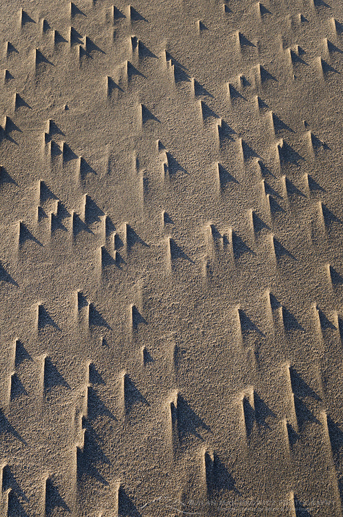 Wind sculpted sand patterns, Harris Beach State Park Oregon