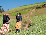 Women carrying water up the hill from a capped spring near their village in Kotoba, Ethiopia. Capping the spring has helped improve access and the quality of the water.