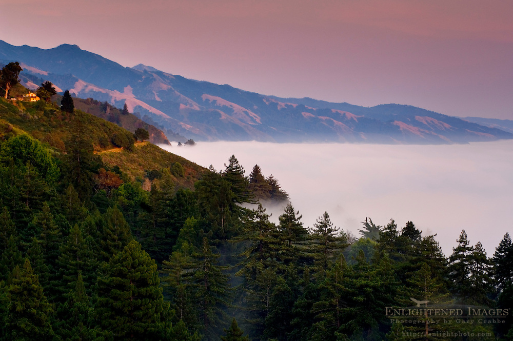 Coastal fog, trees, and hills at sunset Big Sur Coast, Monterey County, California