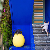 The Majorelle Garden in Marrakech was designed by French artist Jacques Majorelle and it is where the designer Yves Saint Laurent's ashes are scattered.