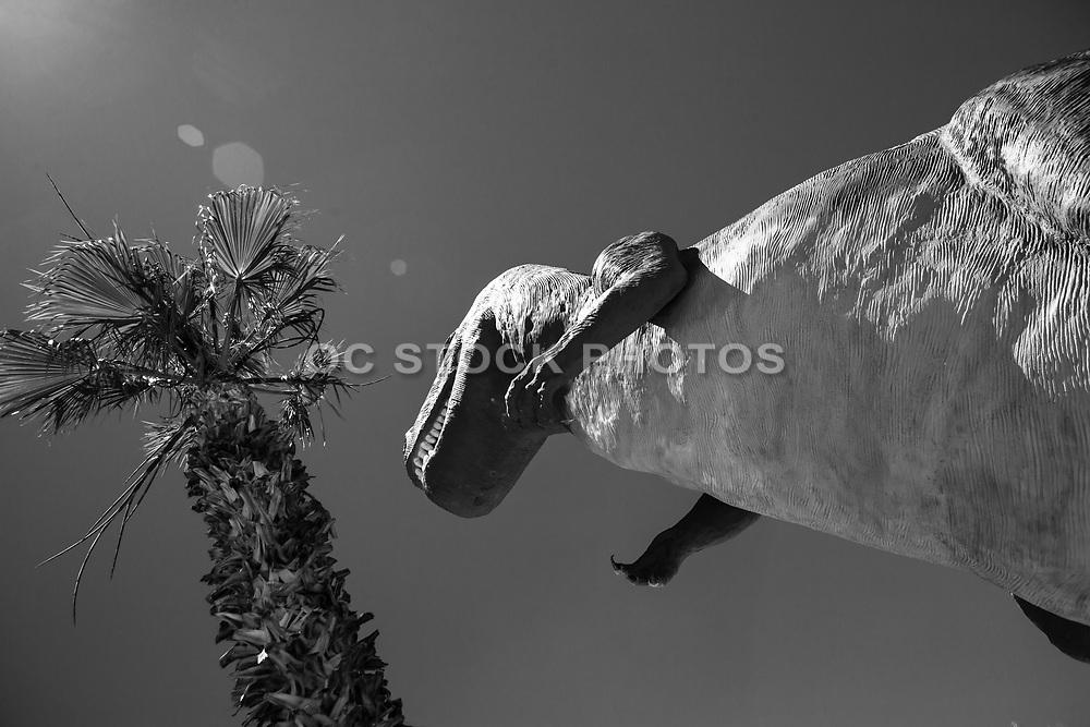 Cabazon Dinosaurs Worlds Biggest Dinosaurs Museum