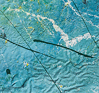 tempera enamel paint canvas: yellow tempera spots on blue enamel background with lines