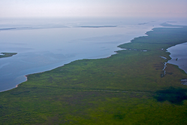 biloxi marsh, st. bernard parish,