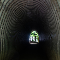 Foot Path Tunnel Under U.S. 101, Barnes Point, Olympic National Park, Washington, US