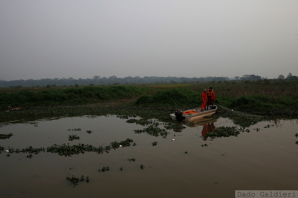 A rescue worker and a fishermen tend a net to catch pink river dolphins on a part of the Pailas river, near Las Londras farming complex, Santa Cruz, Bolivia, Monday, Aug. 23, 2010.(Hilaea Media/Dado Galdieri).