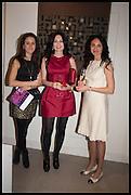 MANON ROWLAND; ELENA ROWLAND; YULIA KRYZHANOVSKA, Miguel Kohler; Works from the 70s and 80s.   Gallery Elena  Shchukina, Lees Place. London. 10 April 2014.