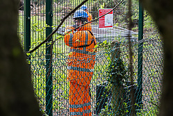 Harefield, UK. 27th April 2019. A security guard looks on as environmental activists from Colne Valley Action sit in trees to prevent their felling as part of work scheduled for this weekend for the HS2 project. The Colne Valley is an area of natural beauty and large areas of trees have been felled there for HS2 in recent weeks. Protesters based at the Harvil Road Wildlife Protection Camp are seeking to prevent further destruction.