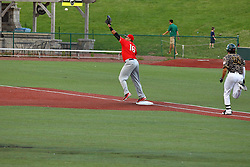 29 July 2016: Jose Barraza stretches to capture the throw out to first on a hit by Dillon Haupt during a Frontier League Baseball game between the Lake Erie Crushers and the Normal CornBelters at Corn Crib Stadium on the campus of Heartland Community College in Normal Illinois