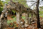 Turkey, Antalya Province, Olympos National Park