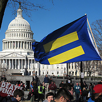 Demonstrators hold signs and line the sidewalks in front of the Capitol Building and the Supreme Court in Washington D.C. on Tuesday, March 26, 2013, where the justices were hearing arguments on California's voter approved ban on same-sex marriage called Proposition 8. The Supreme Court waded into the fight over same-sex marriage Tuesday, at a time when public opinion is shifting rapidly in favor of permitting gay and lesbian couples to wed, but 40 states don't allow it. (AP Photo/ Alex Menendez)
