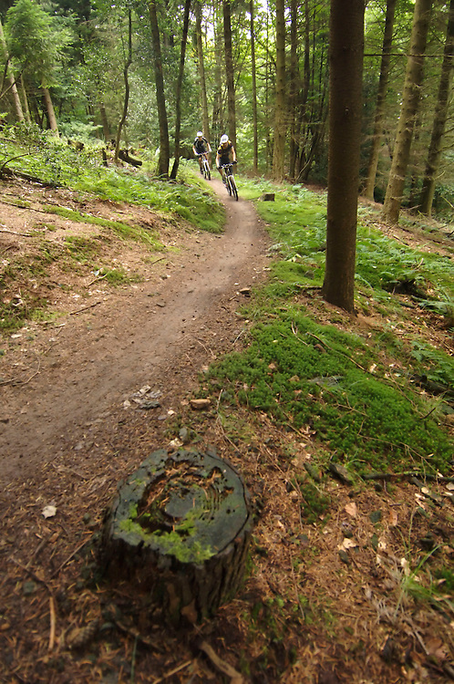 Mountain biking the great trails that criss cross the North Downs between Guildford and Dorking.