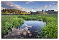 Wetlands in Stanley Basin, Sawtooth Mountains Idaho