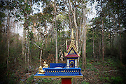 A spirit house stands in the Monks Community Forest close to where the monks live.