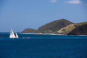 Lone Fox sailing the Old Road Race at the Antigua Classic Yacht Regatta.