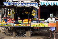 Street scene, cart selling a variety of fruits, Kariakudi, Tamil Nadu, India