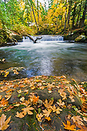 Small waterfall on Whatcom Creek, between Whatcom Falls and Upper Whatcom Falls in Bellingham, Washington State, USA