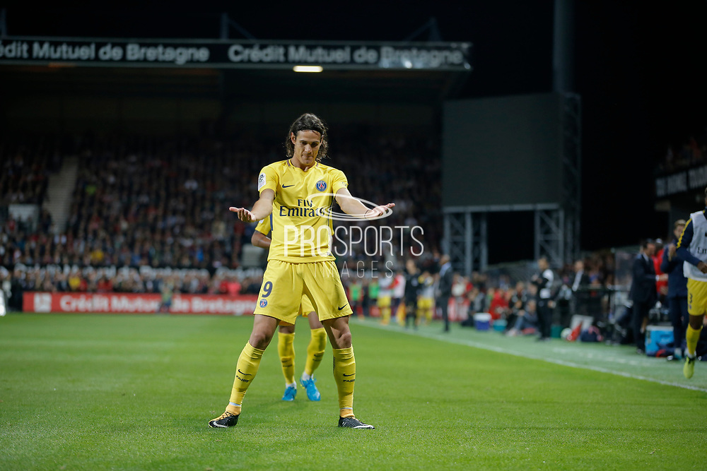 Edinson Roberto Paulo Cavani Gomez (psg) (El Matador) (El Botija) (Florestan) scored a goal and celebrated it with Neymar da Silva Santos Junior - Neymar Jr (PSG) during the French championship L1 football match between EA Guingamp v Paris Saint-Germain, on August 13, 2017 at the Roudourou stadium in Guingamp, France - Photo Stephane Allaman / ProSportsImages / DPPI