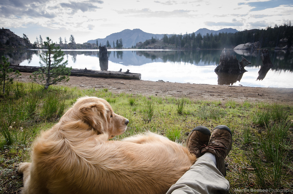 Dog and hiker rest at Upper Kinney Lake, Toiyabe National Forest, California